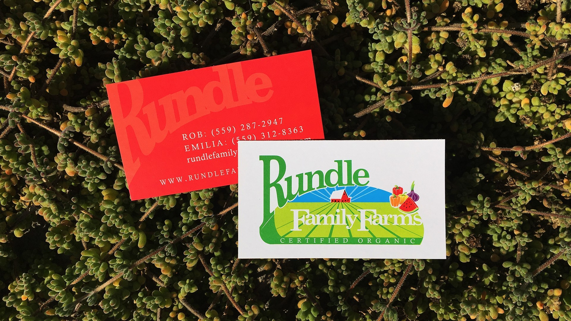 Rundle Family Farms